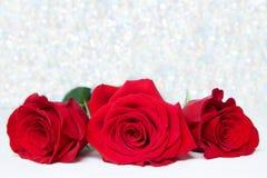 Três rosas vermelhas com fundo do boke espaço da cópia - Valentim e mãe Women' do 8 de março; conceito do dia de s foto de stock royalty free