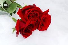 Três rosas vermelhas em uma rede branca - casamentos Fotografia de Stock Royalty Free