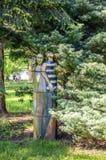 Três sereias de madeira que sentam-se sob uma árvore Imagens de Stock Royalty Free