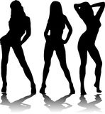 Três 'sexy' Fotografia de Stock Royalty Free
