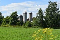 Três silos situados em Franklin County, New York, Estados Unidos, EUA Imagem de Stock Royalty Free
