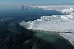 Três skateres do gelo Fotos de Stock