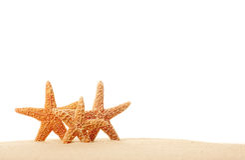 Três Starfish na areia Fotos de Stock Royalty Free
