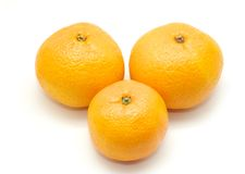 Três tangerines Foto de Stock Royalty Free