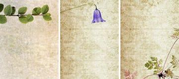 Três texturas encantadoras do fundo ilustração stock