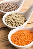 Três tipos da lentilha em umas bacias Fotografia de Stock