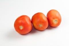 Três tomates Foto de Stock Royalty Free