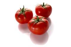 Três tomates em um fundo branco Fotografia de Stock Royalty Free