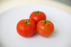 Três tomates em uma placa imagens de stock royalty free
