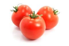 Três tomates frescos no fundo branco imagens de stock royalty free