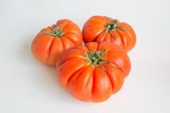 Três tomates inteiros do bife Imagens de Stock