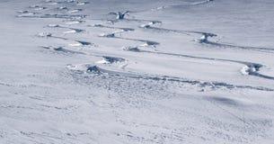 Três trilhas do esqui que mostram voltas na neve fresca do pó Foto de Stock