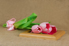 Três tulipas cor-de-rosa com a fita do cetim que encontra-se no quadro Imagens de Stock