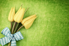 Tulipas de Easter imagem de stock royalty free