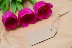 Três tulipas e etiquetas bonitas vermelhas em um fundo de madeira Imagem de Stock
