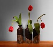 Três tulipas vermelhas em uns vasos pretos imagem de stock