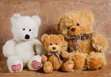 Três ursos do brinquedo Imagens de Stock Royalty Free