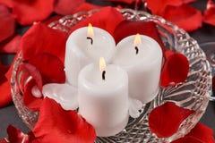 três velas ardentes estão nas pétalas cor-de-rosa vermelhas fotos de stock royalty free