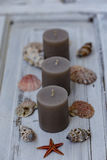 Três velas cinzentas com conchas do mar Fotografia de Stock