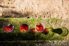 Três vidros cosmopolitas vermelhos no assoalho com reflexão imagens de stock