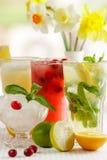 Três vidros da bebida de refrescamento Mohito Fotografia de Stock Royalty Free