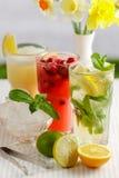 Três vidros da bebida de refrescamento Mohito Imagens de Stock