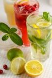 Três vidros da bebida de refrescamento Mohito fotografia de stock
