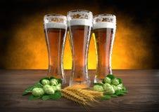 Três vidros da cerveja com cevada e lúpulos - 3D rendem Fotografia de Stock Royalty Free