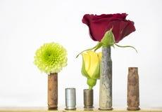 Trío de flores en cubiertas aherrumbradas de la bala en el fondo blanco fotos de archivo libres de regalías