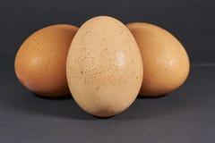 Trío de huevos imagen de archivo