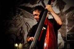 Trío de Paul Roges en el festival 2010 de Koktebel del jazz Imágenes de archivo libres de regalías