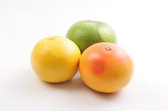 Trío del pomelo y del pomelo Imagen de archivo libre de regalías