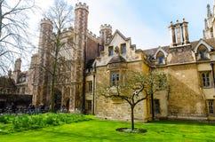 Trójca newtonu i szkoły wyższa ` s jabłoń, Cambridge, UK Fotografia Royalty Free