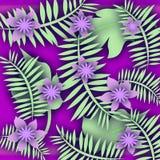 Trópico púrpura de la flor Imagenes de archivo