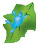 Tröpfchen auf einem grünen Blatt Lizenzfreies Stockfoto