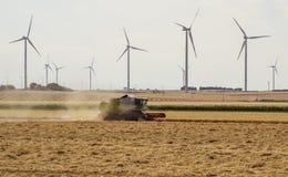 Tröska - bearbeta med maskin arbete på ett sommarfält, väderkvarnbladbaksida Royaltyfri Foto