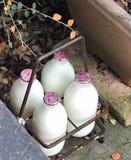 Tröskelhalvliter mjölk, leverans Fotografering för Bildbyråer