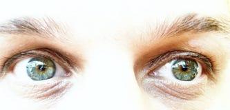 Trötta gröna ögon av en man arkivbilder