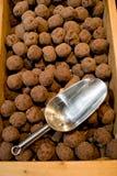 Trüffel mit Schokolade Stockfotografie