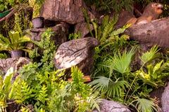 Tr?dg?rd som dekoreras med stenar och tr?d royaltyfri fotografi