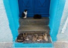 Tür in Griechenland Lizenzfreie Stockfotografie