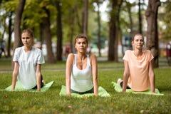 Tr?s meninas delgadas novas que fazem o estic?o em esteiras da ioga na grama verde no parque em um dia morno Ioga no ar livre imagem de stock