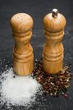 Tr? salta shaker och pepperboxen p? svart kritabr?de royaltyfria foton