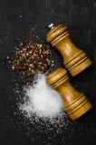 Tr? salta shaker och pepperboxen p? svart kritabr?de royaltyfri foto