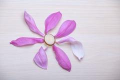 Tr?tabell f?r rosa magnoliakronblad inget arkivfoto