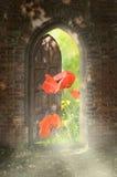 Tür zur neuen Welt. Lizenzfreie Stockbilder