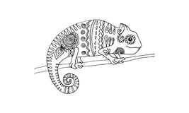 Tração animal para antistress - camaleão Fotos de Stock