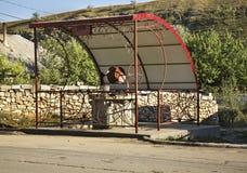 Tração-bem na vila de Trebujeni moldova fotografia de stock royalty free