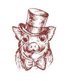 Tração da mão um retrato de um porco pequeno que veste um chapéu alto e o laço Ilustração do esboço do vetor Símbolo de um ano no ilustração stock