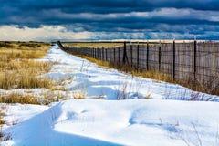 Tração da neve Fotos de Stock